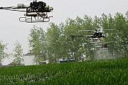 Агрохимические услуги дронами вертолетами Ми-2 дельталетами самолетами Ан-2 Бекас Нарп Скайрейнджер Кропивницкий