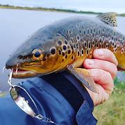Рыболовные крючки оптом - лучшие цены, высокое качество Киев