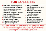 черника сухая в порошке доставка из г.Киев