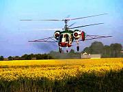 Послуги з внесення інсектициду вертольотом Полтава